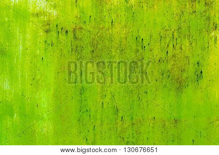 Green concrete painted retro wall texture background