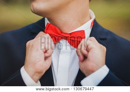 Close Up Of Hands Of Man Correcting Red Bowtie. Man Wears Blue Suit, White Shirt And Red Bowtie