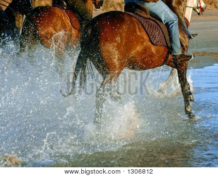 Horses Galloping At Waters Edge