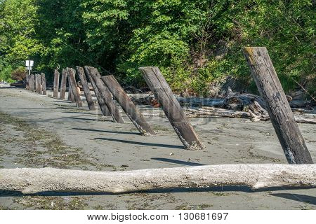 Old wooden posts line the shore at Dash Point Sate Park. in Washington State.