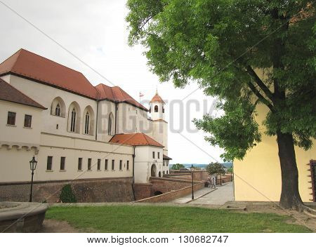 Spilberk castle in Brno, Czech Republic and a green tree in front of it