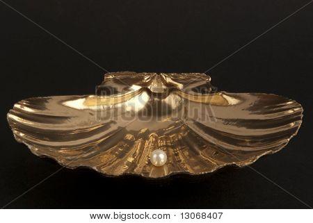 Pearl inside a goldel shell