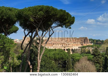 Coliseum as seen from the Palatine hill Rome Italy