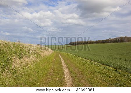 Country Bridleway In The Yorkshire Wolds