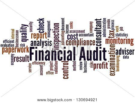 Financial Audit, Word Cloud Concept 5
