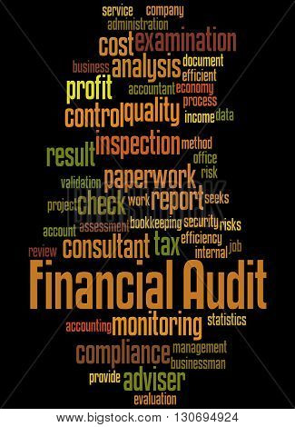 Financial Audit, Word Cloud Concept 6