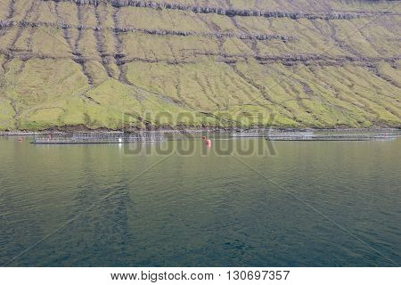 Salmon Farm On The Faroe Islands