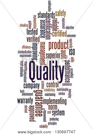 Quality, Word Cloud Concept 7