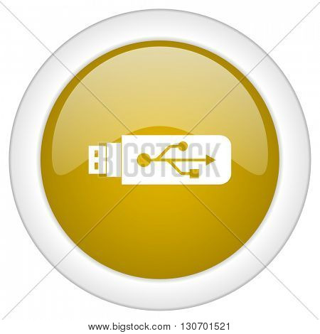usb icon, golden round glossy button, web and mobile app design illustration