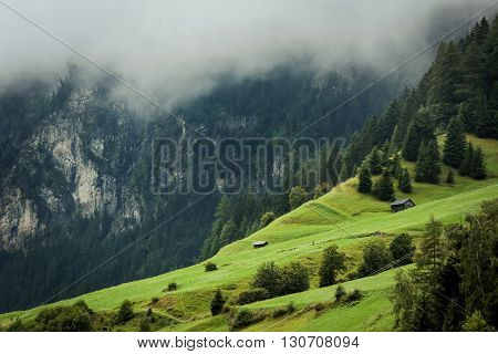 Alpine mountains, evening, fog, house, chalet, trees, forest