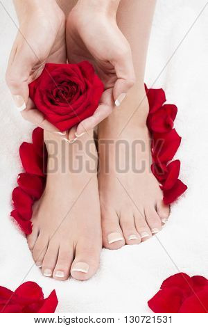 Well groomed female feet and heart shaped hands with red roses. Pedicure. Manicure.