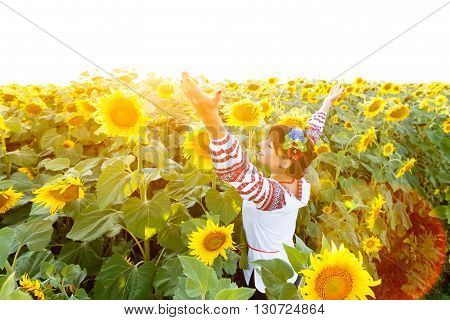 Pretty young woman in national ukrainian blouse embrodery rise hands up on a sunflower plant at sunset backlight.