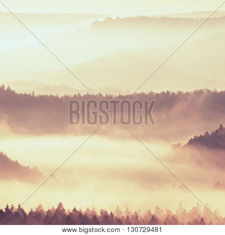 Autumn Sunrise. Beautiful Mountain Of Bohemia. Treetops And Peaks Of Hills Increased From Yellow And