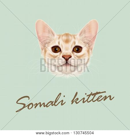 Vector Illustrated portrait of Somali kitten. Cute fluffy face of domestic cat on green background.