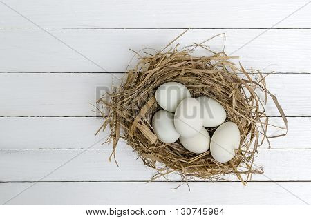 Duck eggs in a grass nest on white wooden background.