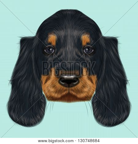 Illustrated Portrait of Gordon Setter dog. Cute black curly face of domestic puppy on blue background.