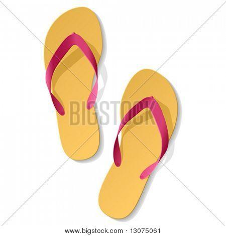 Flip flops. Vector.