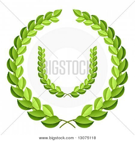 Vector green laurel wreath. Detailed portrayal.