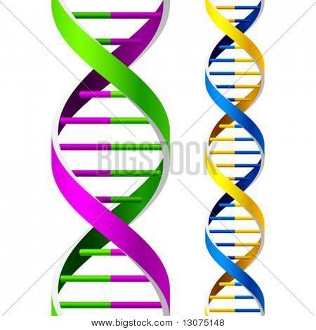 Vektor-DNA-Stränge. Nahtlose. Duplikat für Verlängerung.
