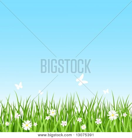Grassy field. Vector. Seamless.