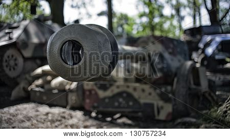 close up on cannon in the forest