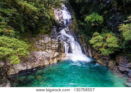 Secluded waterfall in tropical rainforest. Fiorland National Park New Zealand