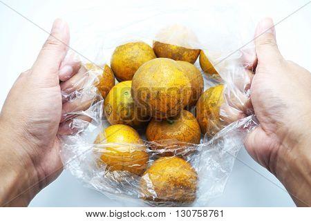 Heap of fresh tangerines/ orange fruit in transparent plastic bag with hands. Focus on upper oranges.