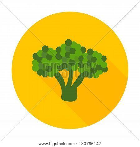 Broccoli Flat Circle Icon