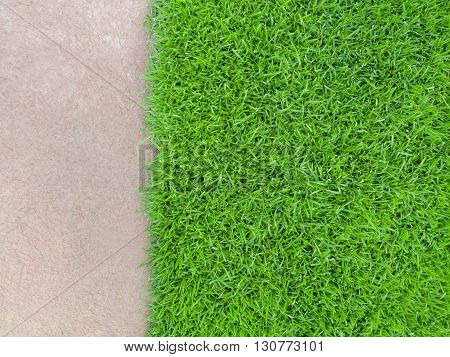 Top View Space of Meadow more than Cement Floor Building or Nature Concept Horizontal