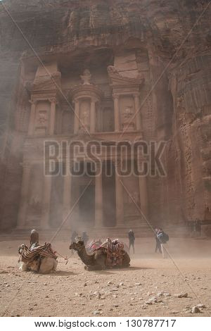 Camels in a sand storm in Petra in front of the Treasury or Al-Kahzneh