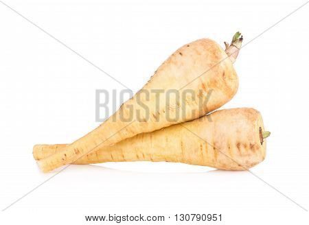 Fresh parsnip roots on a white background.