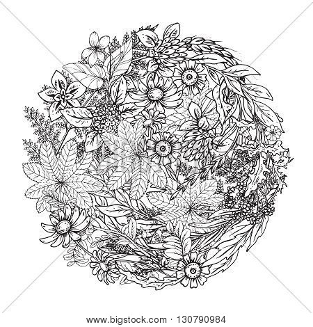 Beautiful monochrome vector floral pattern in doodle style. Design element