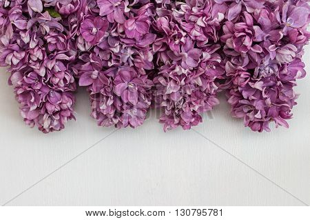 Beautiful lilac flowers on a white background. Background with brushes lilac.