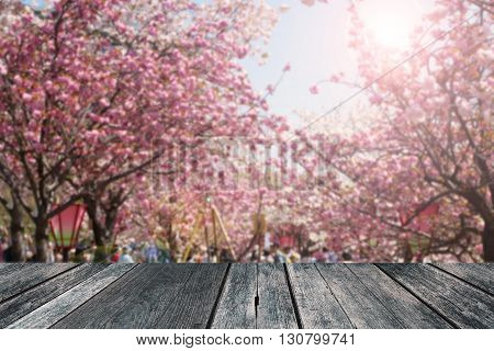 Abstact blur spring background of cherry blossom festival in Osaka Japan with empty wood space