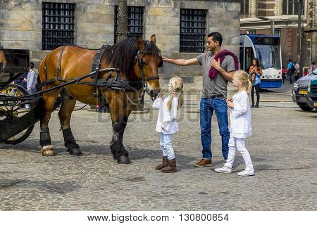 Amsterdam, Netherlands - May 7: Tourist family are examining horse at the Dam Square May 7, 2013 in Amsterdam, Netherlands.