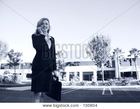 Lawyer Or Business Woman Busy Talking On Phone