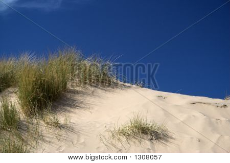 Sand Dunes In The Sun
