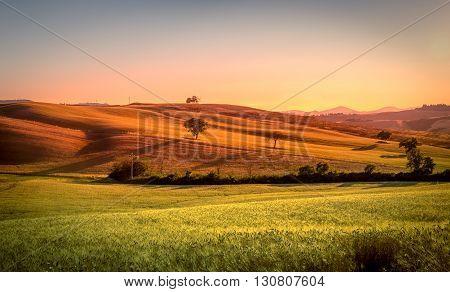 Amazing Tuscan Landscape