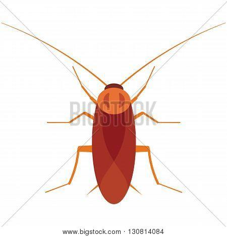 Cockroach vector illustration. Cockroach bug on white background. Cockroach vector. Cockroach illustration. Cockroach beetle isolated vector