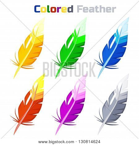 Colored Feather isolated on white background. Vector illustration.