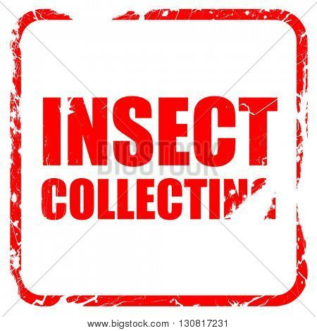 insect collecting, red rubber stamp with grunge edges