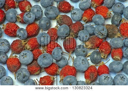 background of many  rosehip berries and blueberries