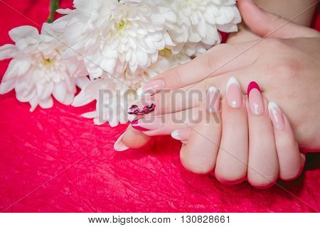 Female Manicure beauty style womens hands nail, fashion