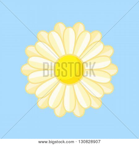 Simple illustration of white flower with contour. Separate bloom.