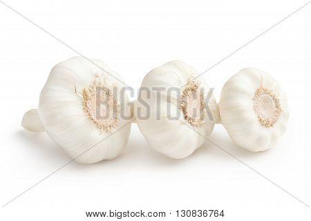 Garlic. Garlic isolated on a white background.
