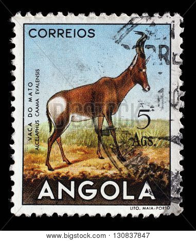ZAGREB, CROATIA - SEPTEMBER 03: a stamp printed in the Angola shows Red Hartebeest (Alcelaphus buselaphus caama), circa 1953, on September 03, 2014, Zagreb, Croatia