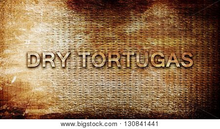 Dry tortugas, 3D rendering, text on a metal background
