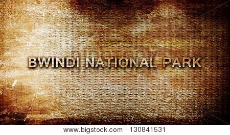 Bwindi national park, 3D rendering, text on a metal background