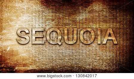 Sequoia, 3D rendering, text on a metal background