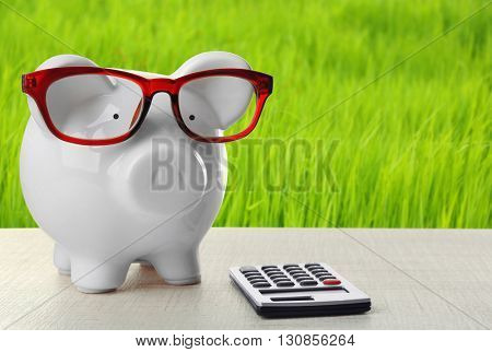 Piggy bank with glasses and calculator on green grass background